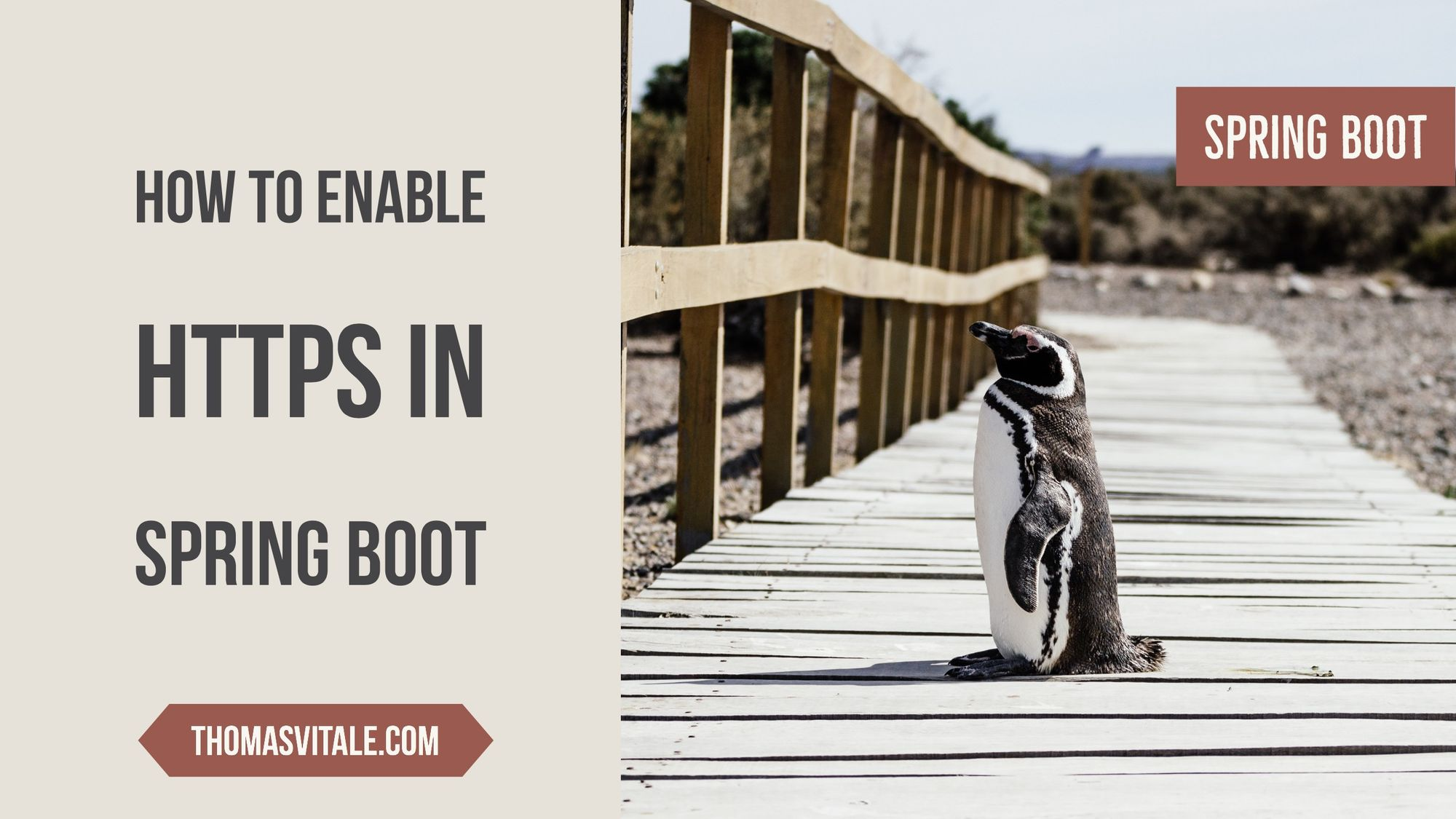How to enable HTTPS in a Spring Boot Java application